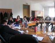 predstavitev projekta, januar 2009