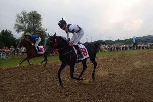 konjske_dirke_imeno