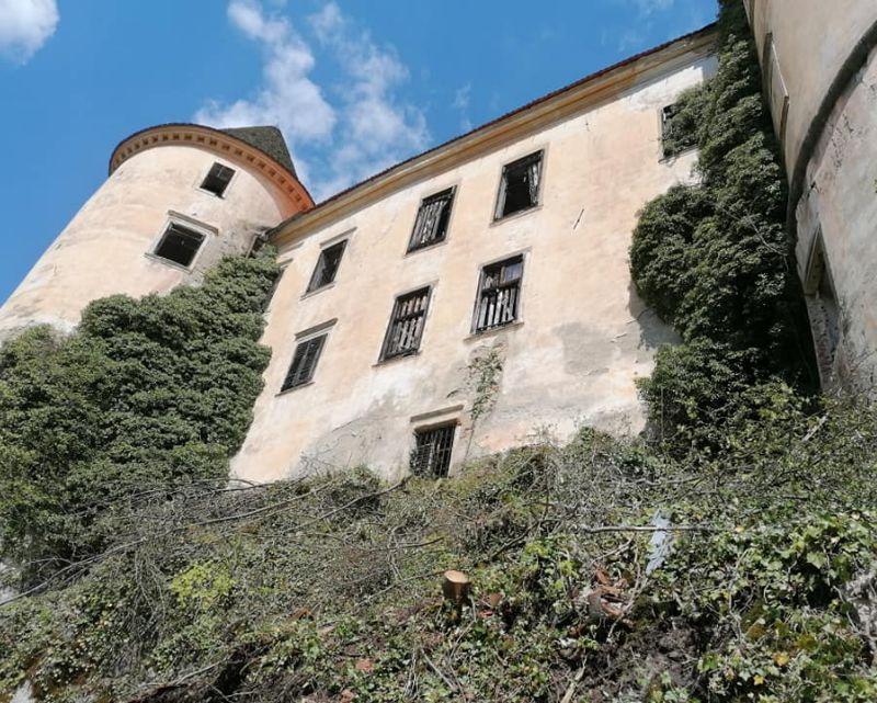 Na gradu so v vmesnem času že očistili drevje in ga zavarovali.